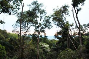 Sadiri Rainforest Lodge Bolivia (23)
