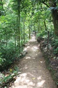 Sadiri Rainforest Lodge Bolivia (39)